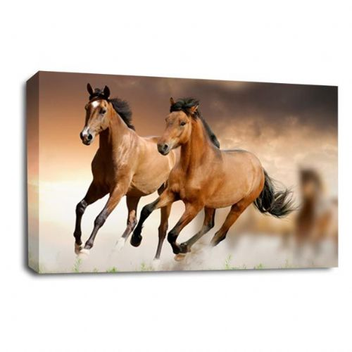 Wild at Heart Horse Canvas Wall Art Picture Print